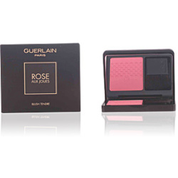 ROSE AUX JOUES blush tender 06 pink me up