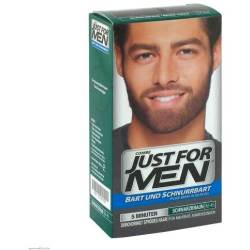 Just For Men Brush in Color Gel Schwarzbraun 28 4 ml Gel